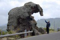 09-elefante